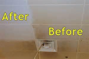 aluminate brightener & kemlite wall cleaner picture 2