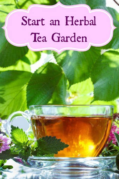 rhino herbal tea vs honeymoon tea picture 10