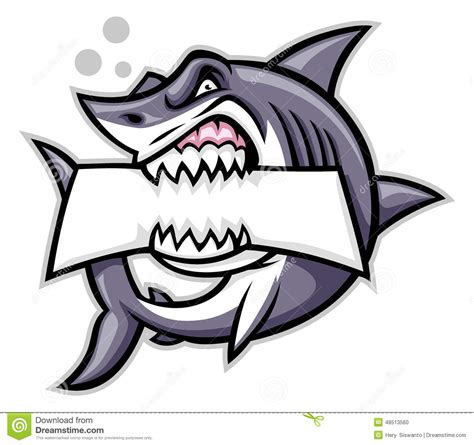 great white shark teeth picture 15