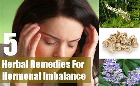 herbal remedies for hormone replacement picture 5