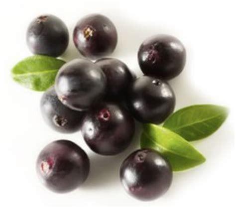 acai berry chile picture 7