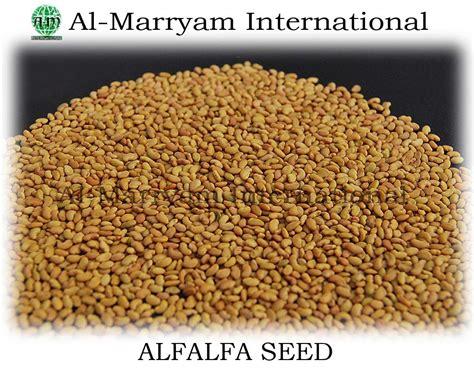 alfalfa seed companys picture 1