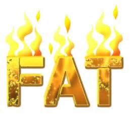 fat burning picture 5