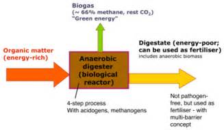 anaerobic digestion picture 6