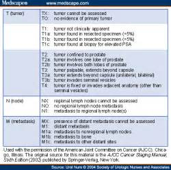 Tnm1 prostate picture 14