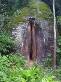 bentuk vagina dan penis picture 2