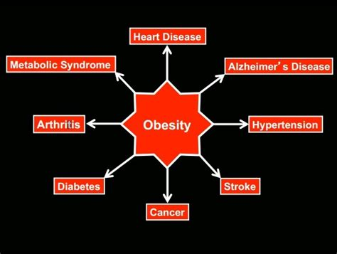 Cholesterol obesity picture 2