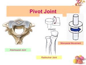pivot joint picture 3