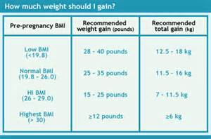 natural weight gain during pregnancy picture 11