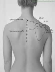gall bladder 21 acupuncture picture 3