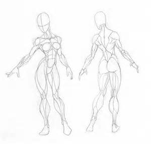 female muscle art picture 2