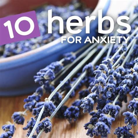 herbal plants for stress picture 7