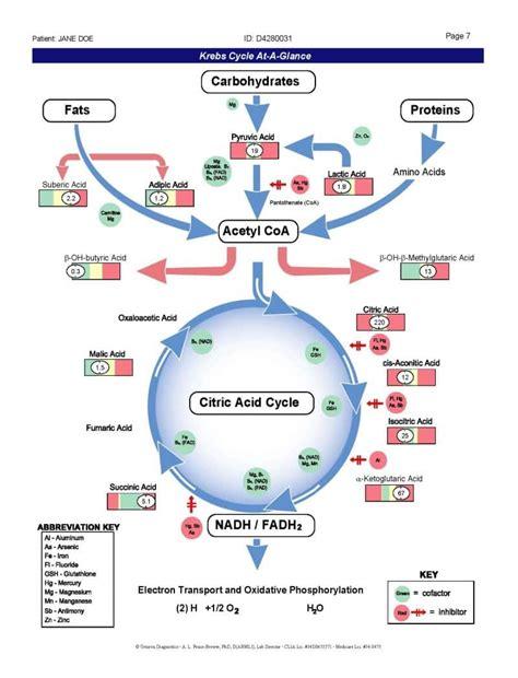 benefits of alpha lipoic acid picture 6