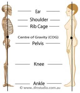 ankle joint picture 7