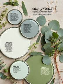 Herbal garden design picture 11
