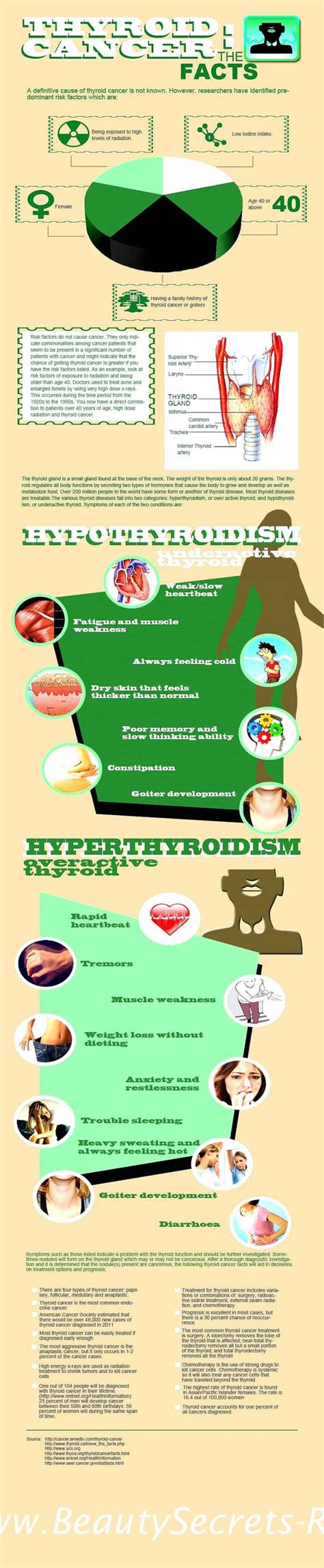 thyroid about thyroid info picture 6
