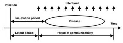 what is the incubation period for the herpes virus picture 2