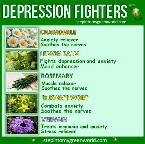 depression herbal treatment picture 3