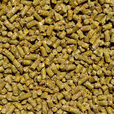 how much alfalfa pellets to feed a goat picture 2