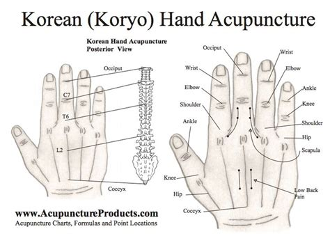 acupuncture for appee control picture 1