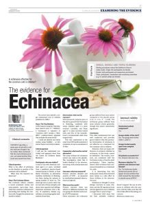 echinacea and the common cold picture 3