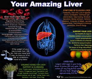 healing the liver picture 6