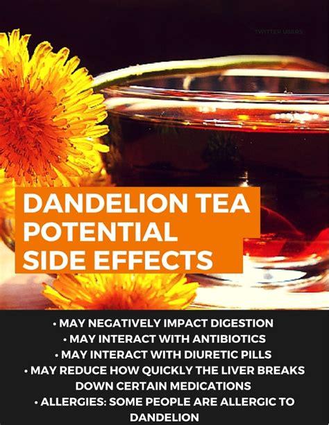 dandelion root effect on men picture 5