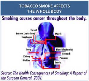 how to cleanse the body of smokeless tobacco picture 13