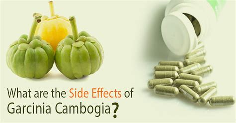 side effects of garcinia cambogia plus picture 8