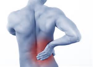muscle back pain picture 6