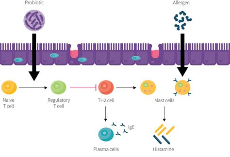 allergic reaction to probiotics picture 8