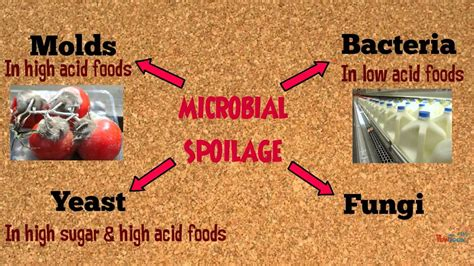 microbial spoilage of picture 6