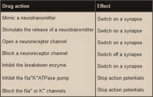 tea effects opiate receptors picture 13