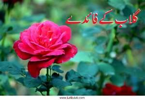 hindi me bimariyon ka mashwara medical picture 2