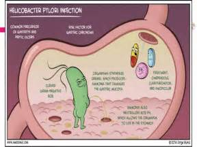 digestion enzymes picture 11