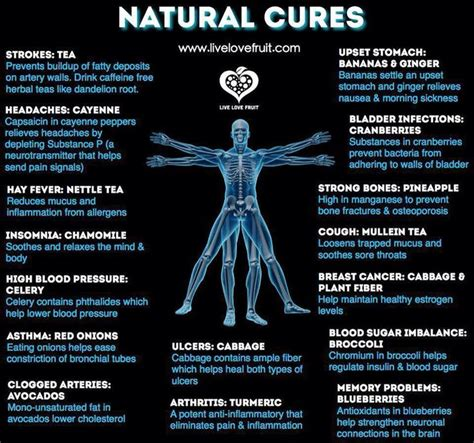 natrual herbal doctor picture 6