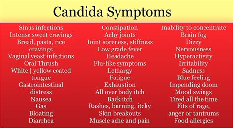 candida yeast infection com picture 3