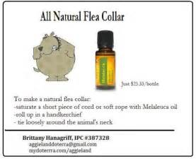 doterra oils and what is a natural male picture 15