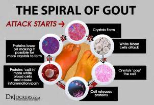 gout and liver function picture 3