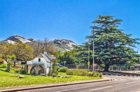 old fat white paarl cape town picture 1