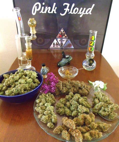 herbal remedy joe weed picture 11