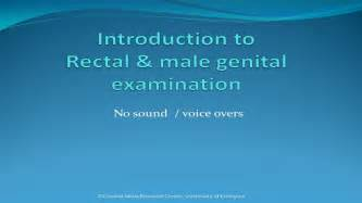 exam penis by nurse picture 11