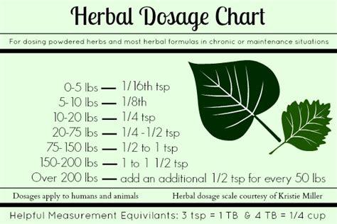 herbal plus oregano picture 5
