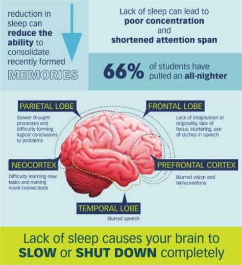 facts on sleep deprivation and reaction time picture 13