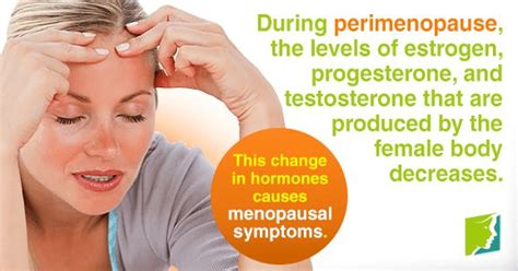 testosterone you and your hormones picture 10