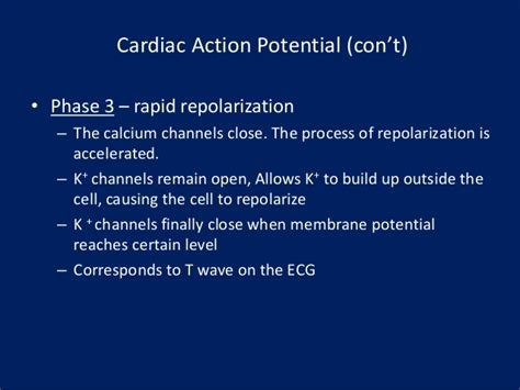 cardiac muscle and wave summation picture 10