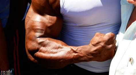 build forearm muscle picture 6