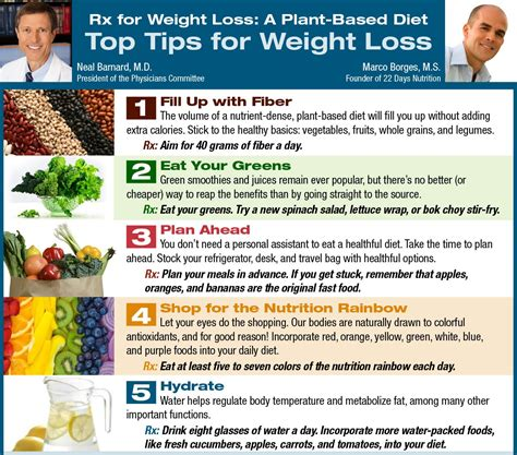 fast weight loss diets picture 5