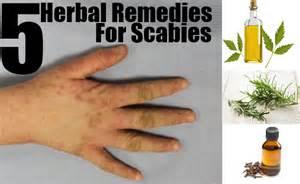 natural treatment to kill lactobacillosis picture 1