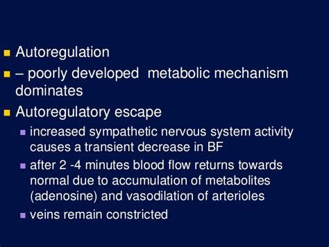autoregulatory blood flow picture 2